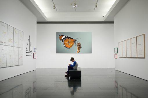 Tablou Canvas Fluture