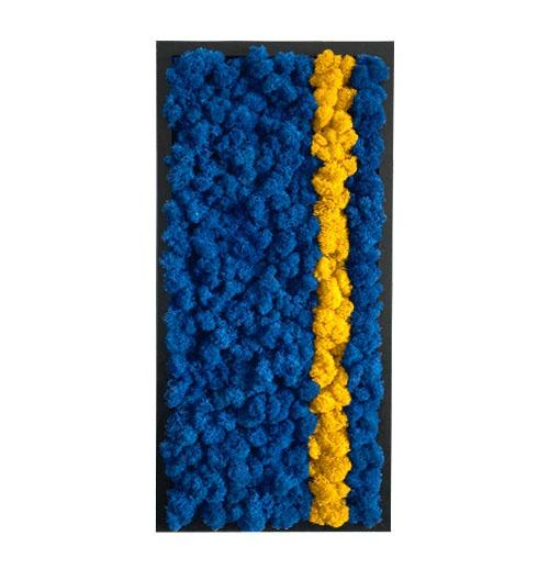 Tablou licheni Dunga