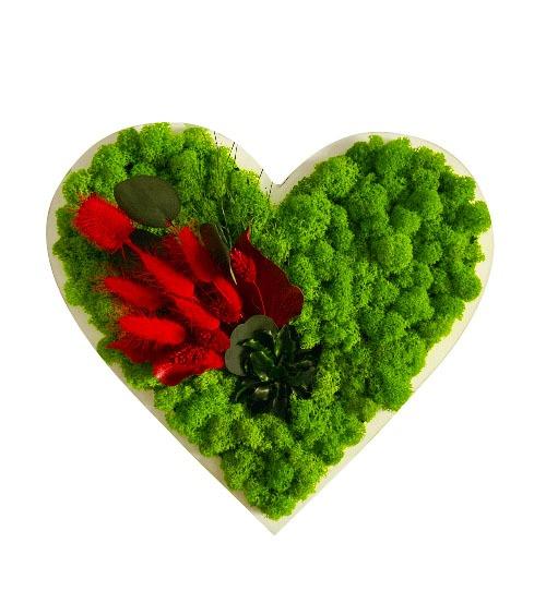 Tablou licheni Inima