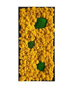 Tablou licheni Musetel