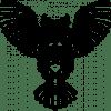 owl decoration monoline design 14 4988